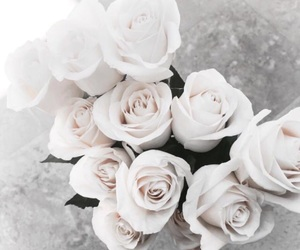 bouquets, rose, and white image