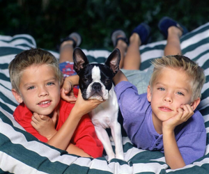 babies, dylan sprouse, and cole sprouse image