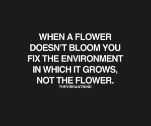 quotes, flower, and life image