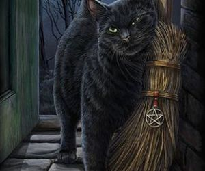cat, black cat, and witch image
