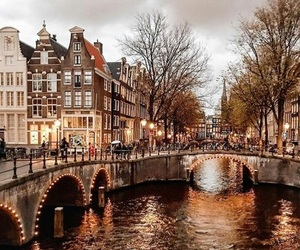 amsterdam, fall, and autumn image