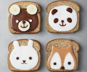 food, animals, and bear image