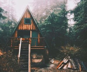 fog, travel, and woods image
