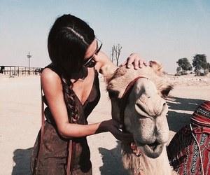 girl, travel, and animal image