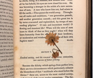 19th century, flower, and aesthetic image
