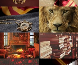 aesthetic, hogwarts, and lion image