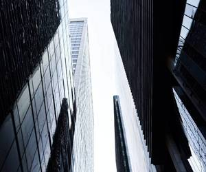 black and city image