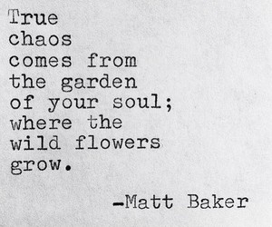 chaos, flowers, and soul image