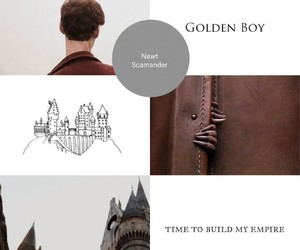 aesthetic, newt scamander, and book image