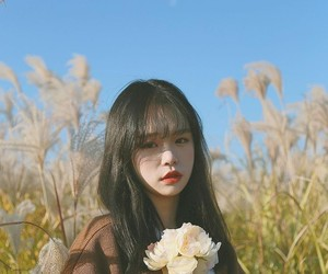 aesthetics, korean, and ulzzang image