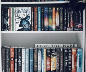 book shelves, books, and book photography image