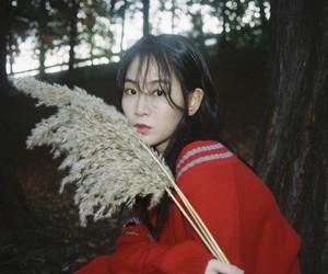 soyou, sistar, and kang jihyun image