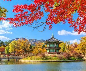 asia, autumn, and bridge image