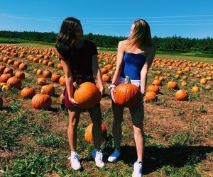 best friend, fall, and Sunny image