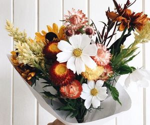 floral, send me flowers, and flowers image