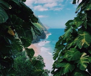 beach, summer, and landscape image
