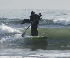 death, funny, and surf image