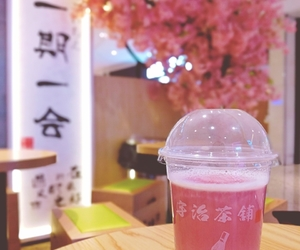 beverage, cherry blossom, and drink image