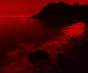 beautiful, aesthetic, and red image