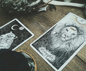 cards, lion, and witch image