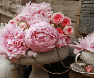 nice, rose, and pink image