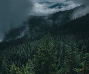 beautiful, gray, and summer image