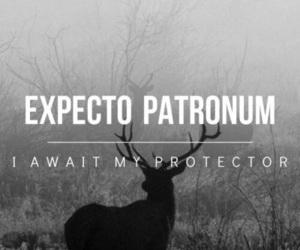 expecto patronum image