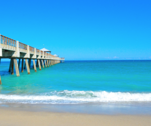 beaches, boardwalk, and beach lovers image