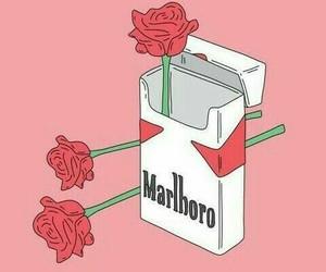 rose, cigarette, and marlboro image