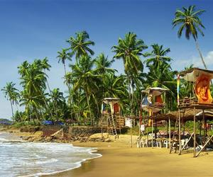 things to do at goa and top things to do in goa image