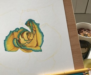 art, coloured pencil, and floral image