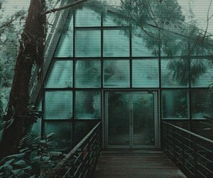 green, plants, and grunge image