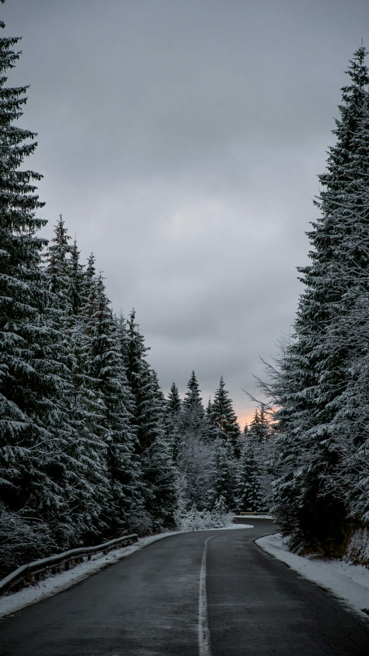 Winter Shared By H I L A L On We Heart It