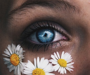 blue, eyes, and flower image