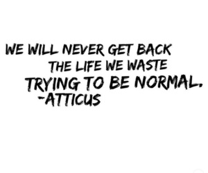 atticus, black and white, and never image