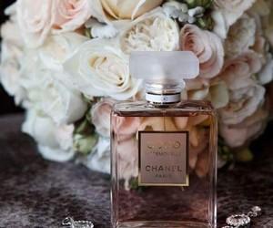 aroma, perfume, and moda image