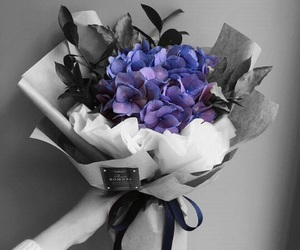 flowers, lavender, and color popping image