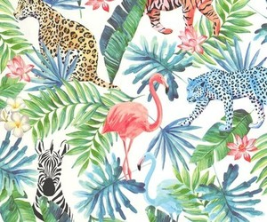 animals, colors, and patterns image