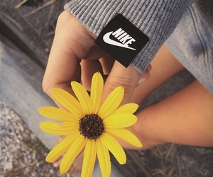 flower, nike, and summer image