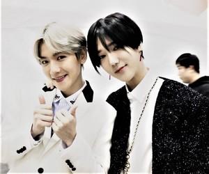 exo, super junior, and baekhyun image