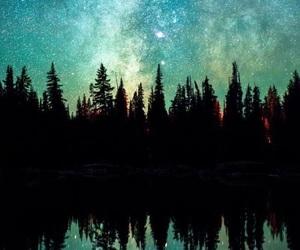 beautiful, nature, and stars image