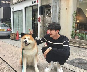 ulzzang, boy, and dog image