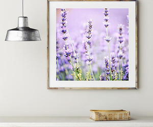 art, lavender, and nature photography image