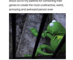 funny, humor, and kermit image