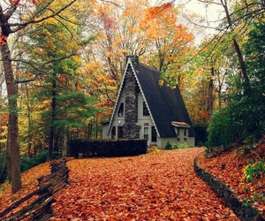 autumn, house, and tree image