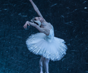 dance, ballet, and swan lake image