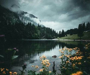 flowers, lake, and mountains image