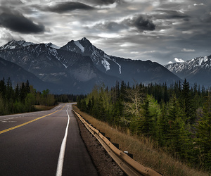 road, mountains, and forest image