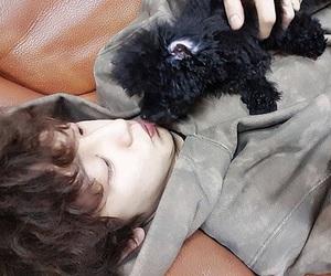 exo, chanyeol, and korean image