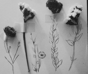 flowers, grunge, and art image